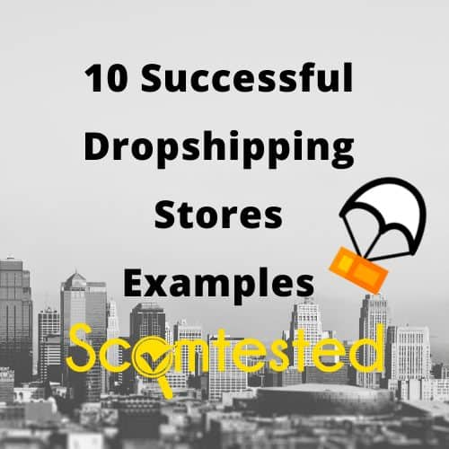 Shopify Dropshipping Stores